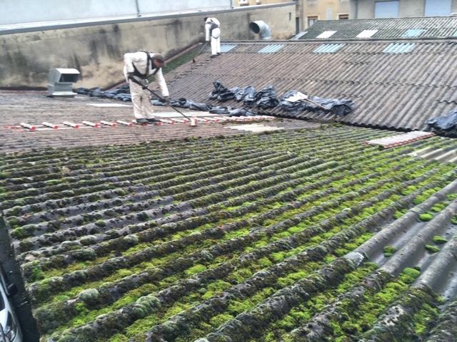 un démoussage écologique sur une toiture fibro-ciment