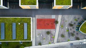 Read more about the article Qu'est ce qu'un toit végétalisé et pourquoi le choisir ?